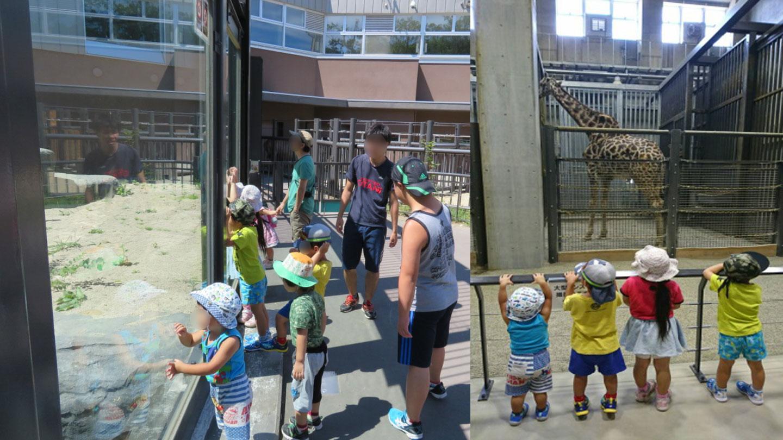 動物園へ行きました。
